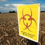 Kŕmite seba, alebo dokonca vaše dieťa geneticky upravenými potravinami, ktoré podľa prieskumov spôsobujú rakovinu? Spúšťame zbierku pre testy GMO!
