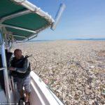 Karibik tak ako ho nepoznáte – more plné odpadkov
