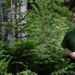 Video: Čertovica – Slovenská lesnícka komora