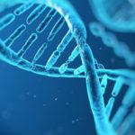 Prvý priamy zásah do DNA. Hráme sa na bohov?