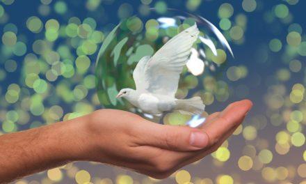 Ludvík Nábělek: Kultúra mieru