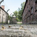 Richard Lipták na DALITO: Nacizmus ako chov čistej rasy