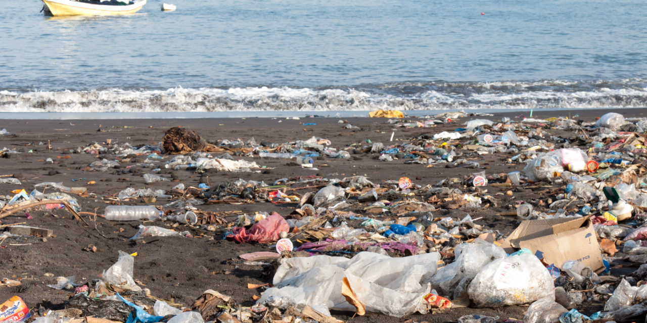 Plastový Doom, alebo Európa nie je zodpovedná za celý svet
