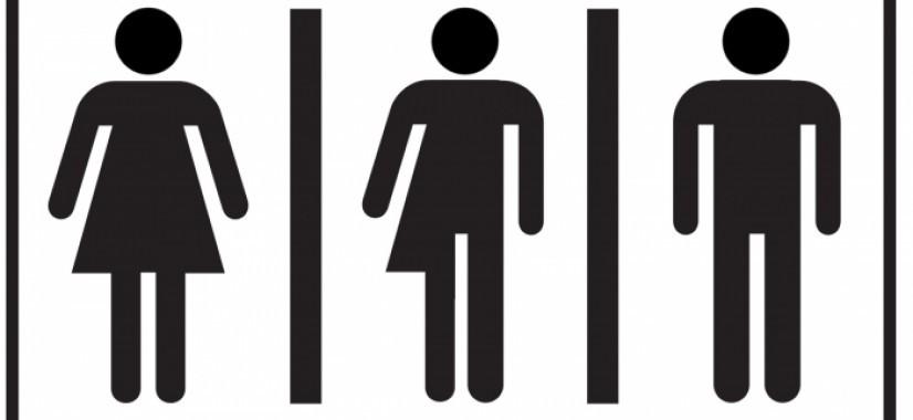 Istanbulský dohovor je len jedna z ciest na zavedenie gender ideológie