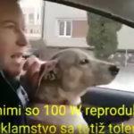 V jednej ruke volant, v druhej mikrofón, pes na kolenách, kandidát Progresívneho Slovenska Matej Fabšík prenasleduje dodávku Kotlebovcov